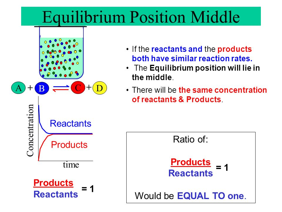 Equilibrium Position Middle
