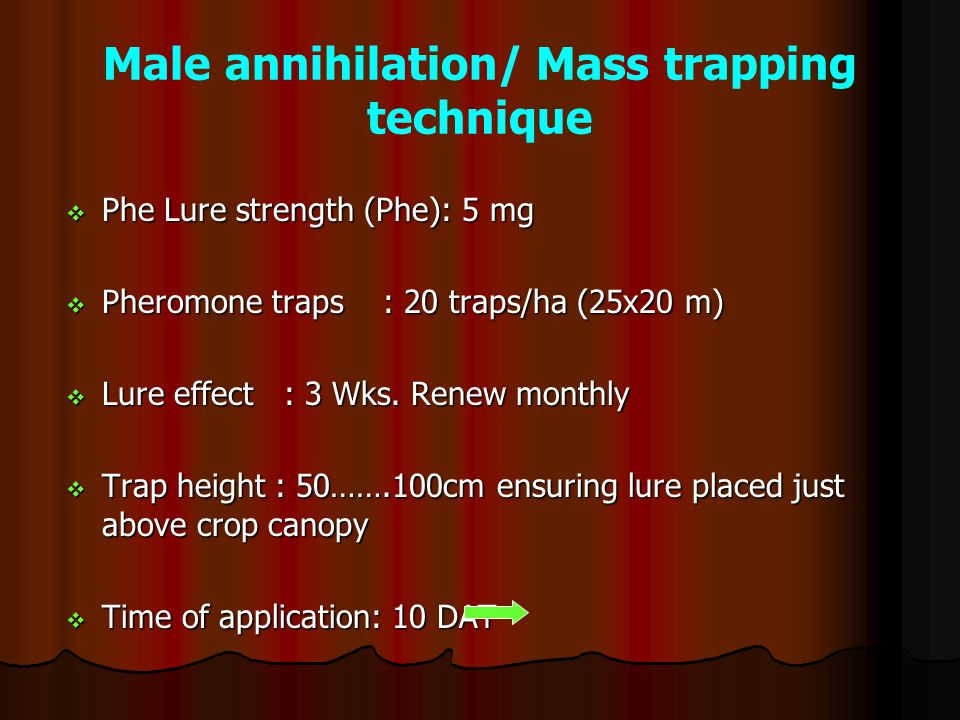Male annihilation/ Mass trapping technique