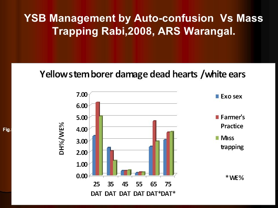 YSB Management by Auto-confusion Vs Mass Trapping Rabi,2008, ARS Warangal.
