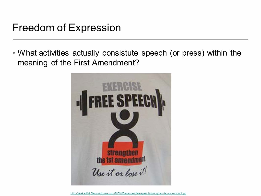 Freedom of Expression What activities actually consistute speech (or press) within the meaning of the First Amendment