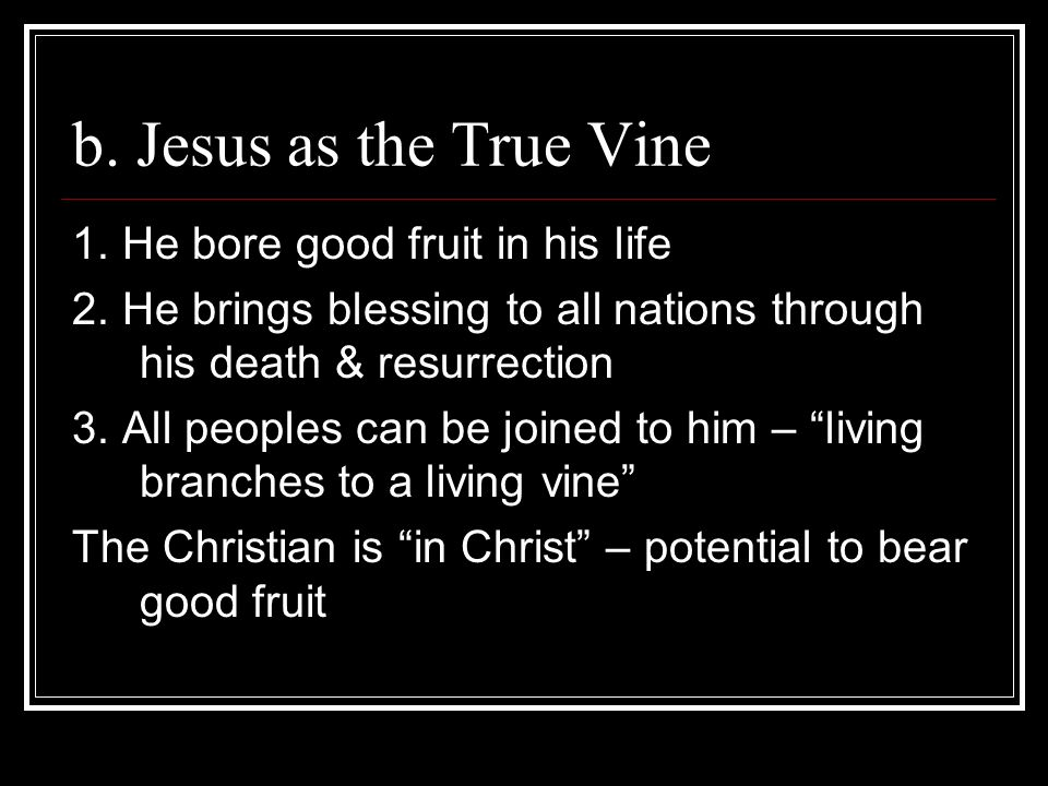 b. Jesus as the True Vine 1. He bore good fruit in his life