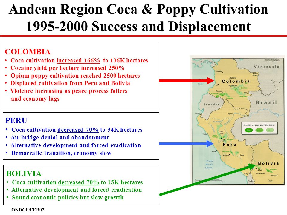Andean Region Coca & Poppy Cultivation