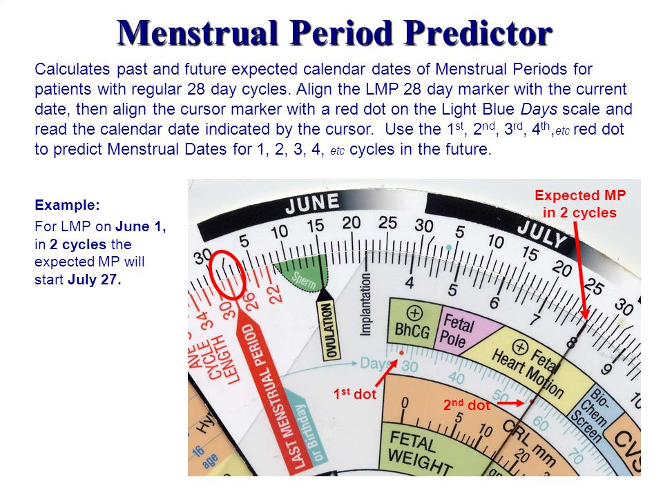 Menstrual Period Predictor