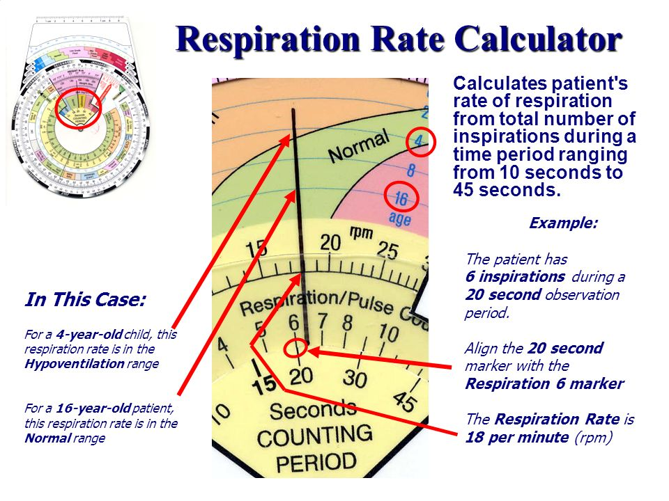 Respiration Rate Calculator