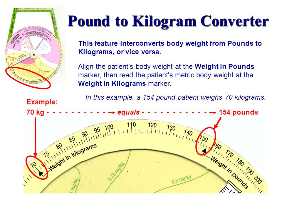 Pound to Kilogram Converter