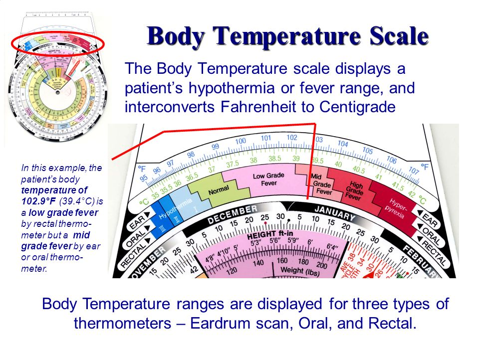Body Temperature Scale