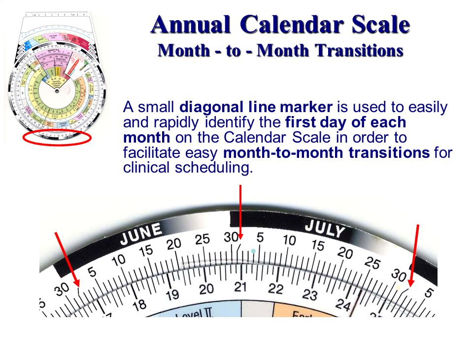 Annual Calendar Scale Month - to - Month Transitions