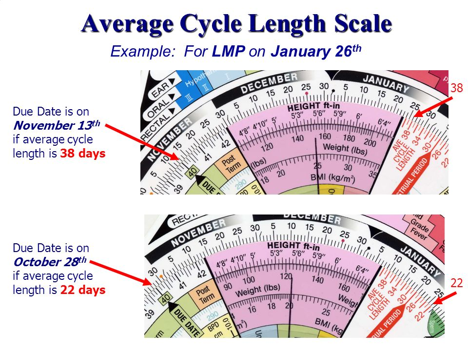 Average Cycle Length Scale