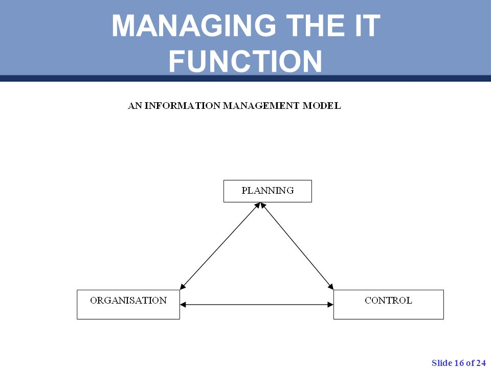 MANAGING THE IT FUNCTION