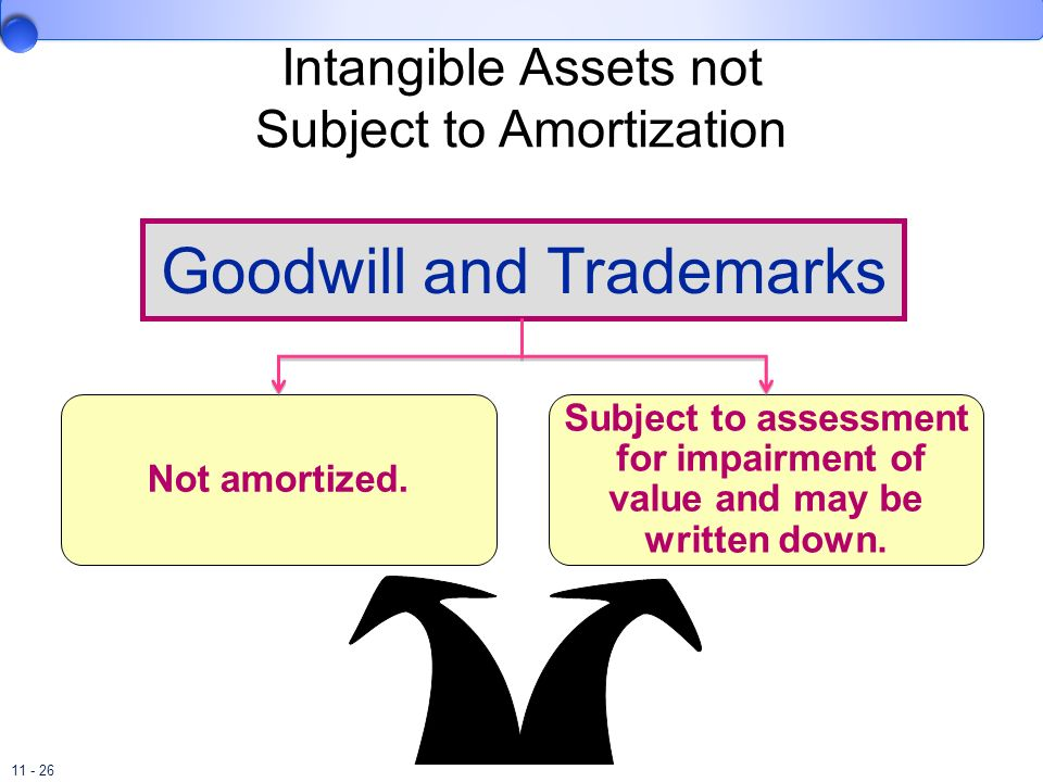Intangible Assets not Subject to Amortization