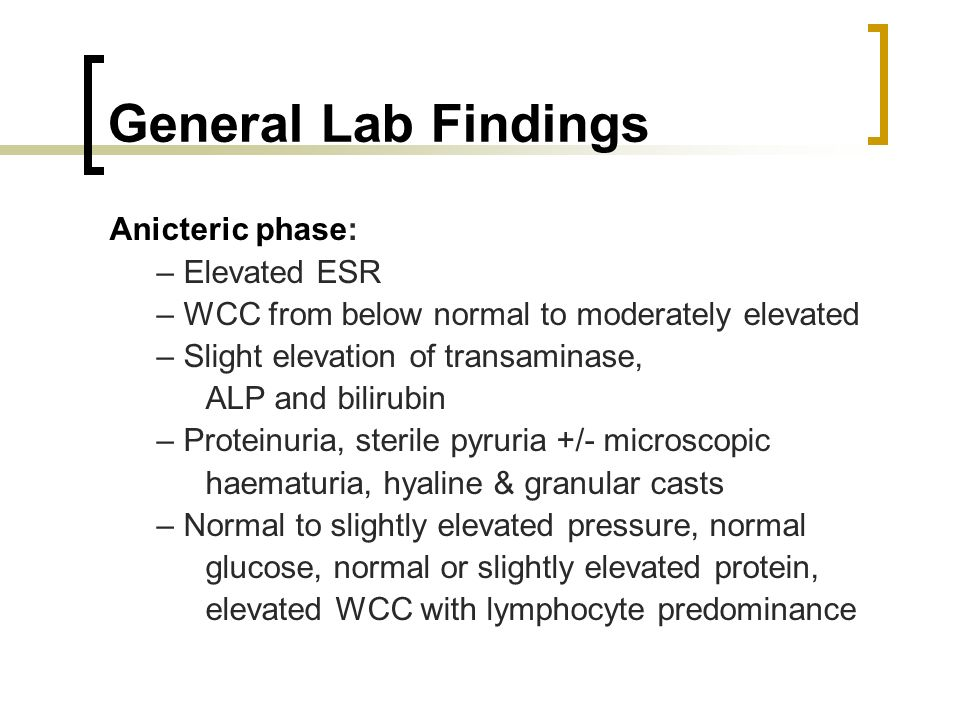 General Lab Findings Anicteric phase: – Elevated ESR