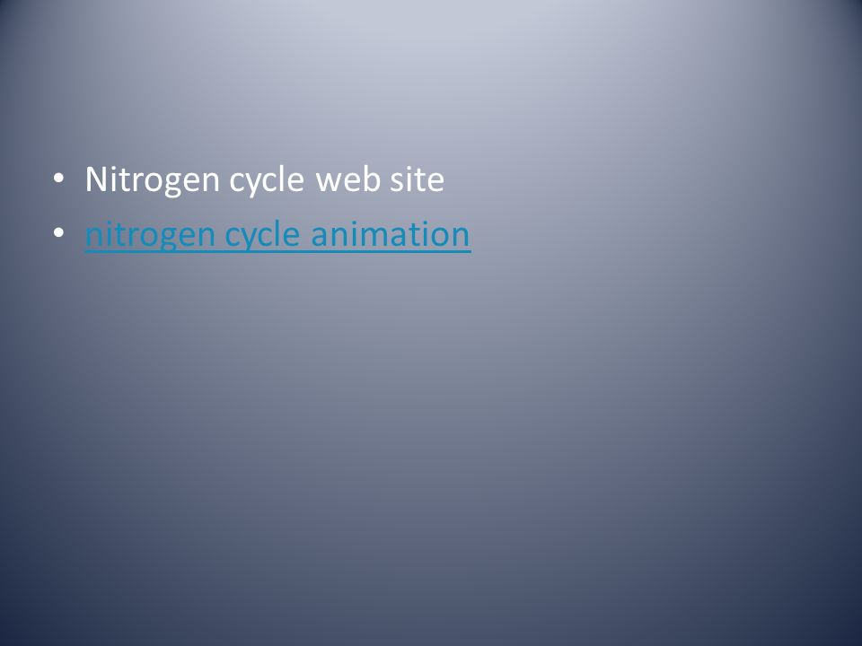 Nitrogen cycle web site
