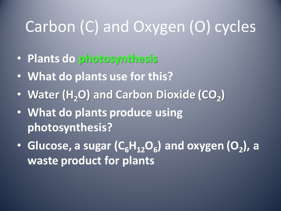 Carbon (C) and Oxygen (O) cycles