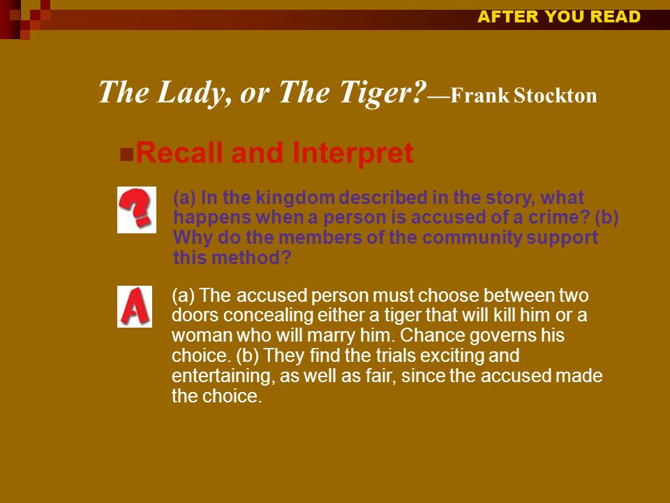 literary devices in the lady or the tiger