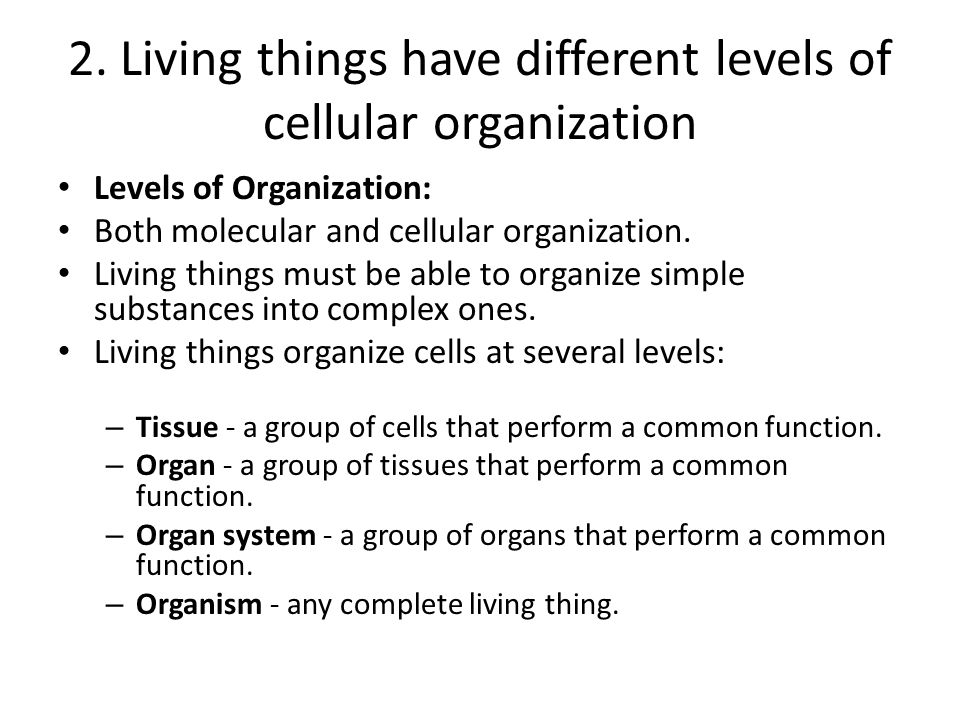 2. Living things have different levels of cellular organization