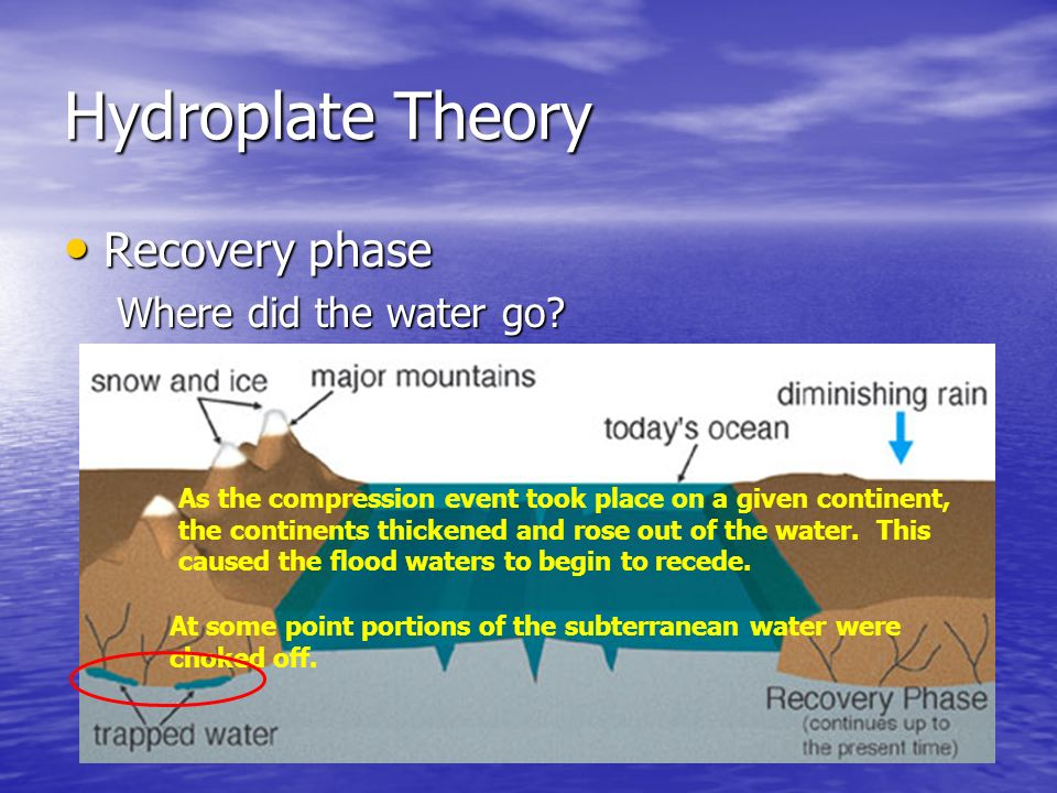 Hydroplate Theory Recovery phase Where did the water go