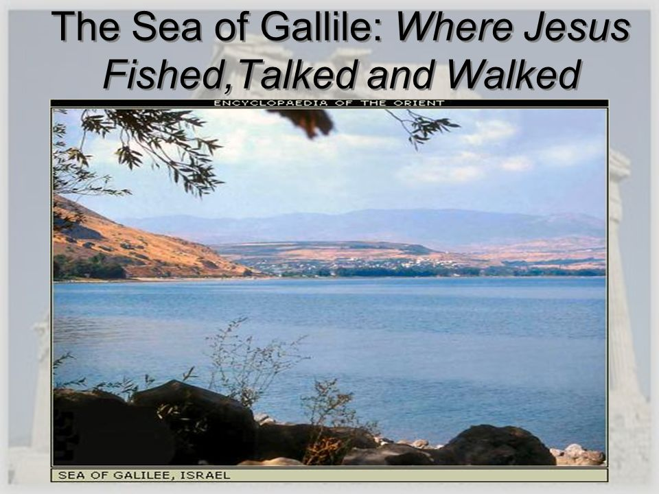 The Sea of Gallile: Where Jesus Fished,Talked and Walked