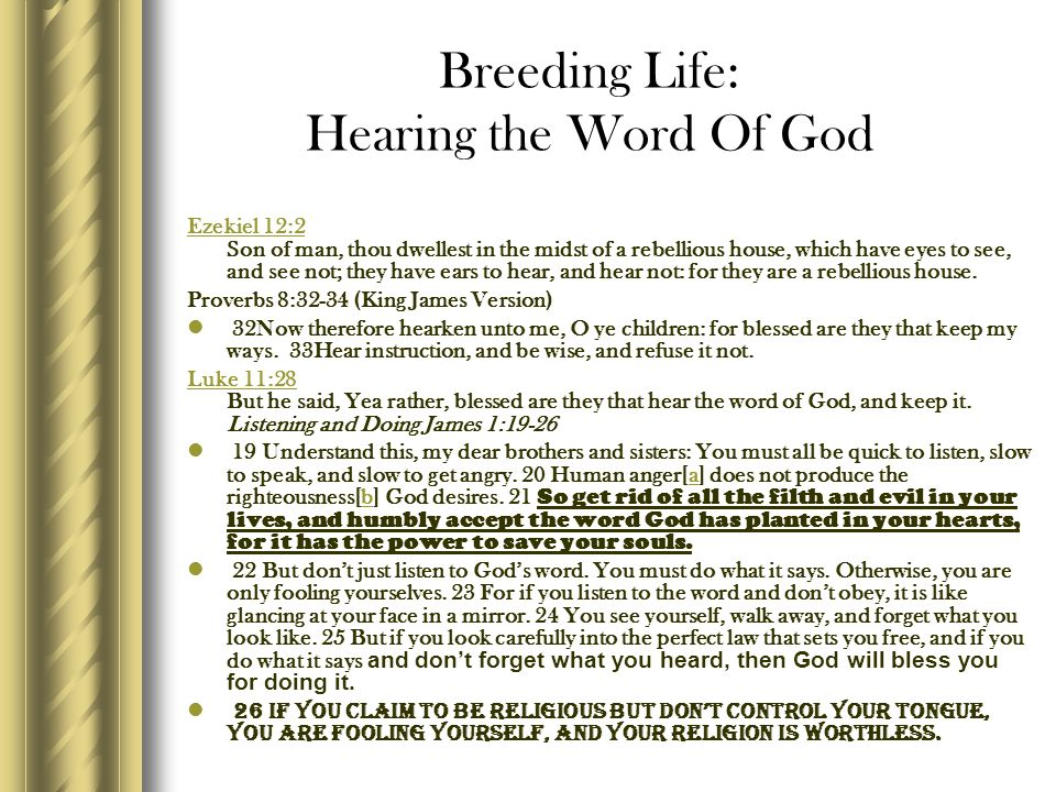 Breeding Life: Hearing the Word Of God