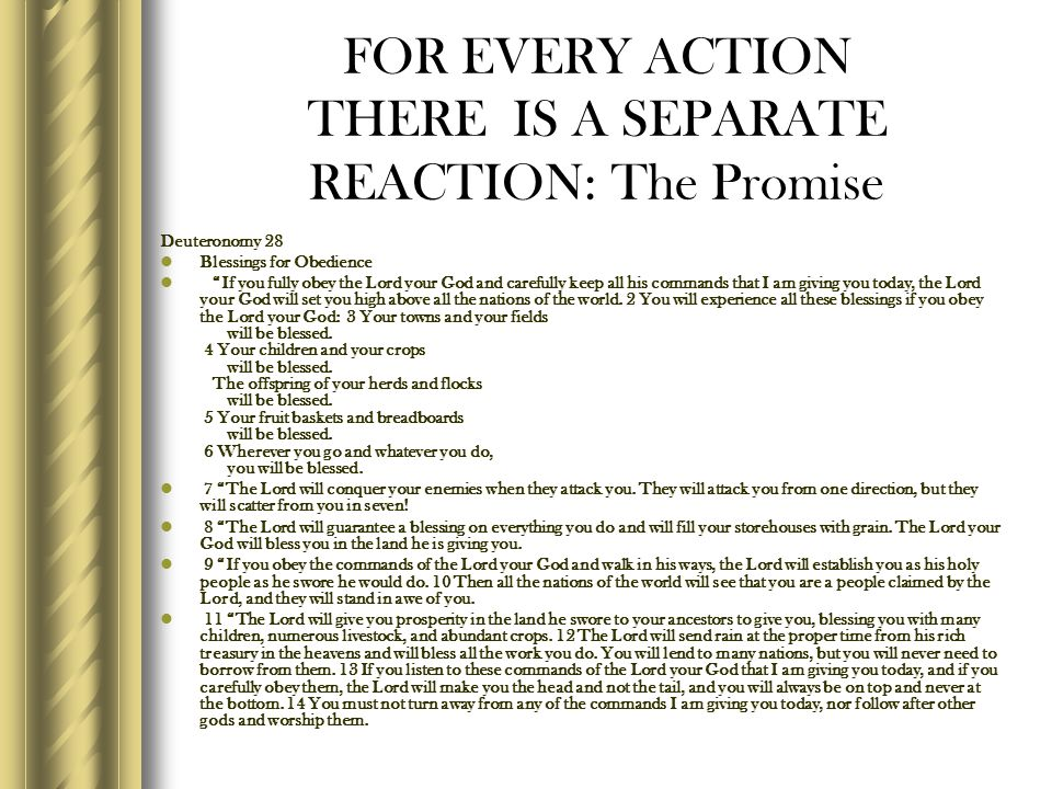FOR EVERY ACTION THERE IS A SEPARATE REACTION: The Promise