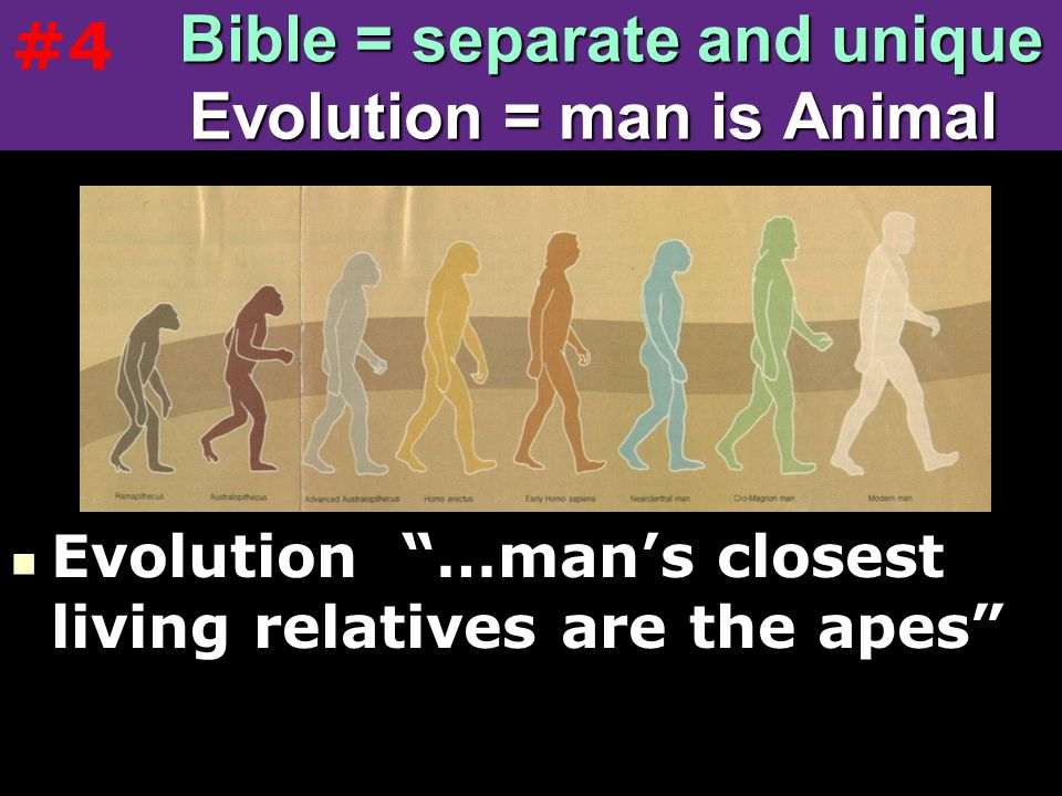 Bible = separate and unique Evolution = man is Animal