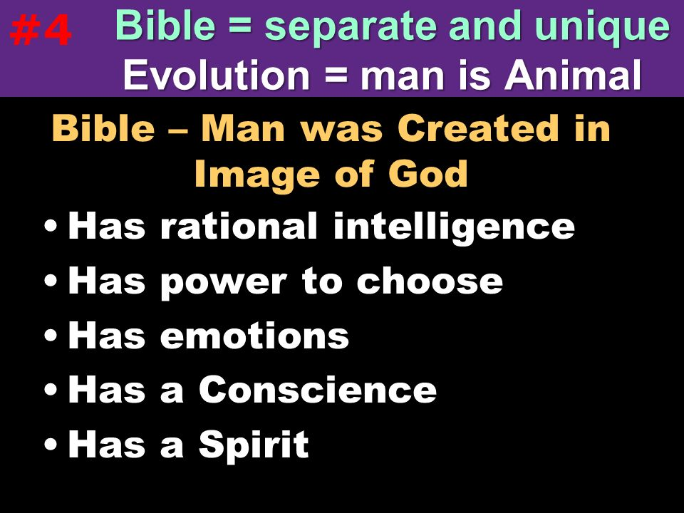 Bible – Man was Created in Image of God