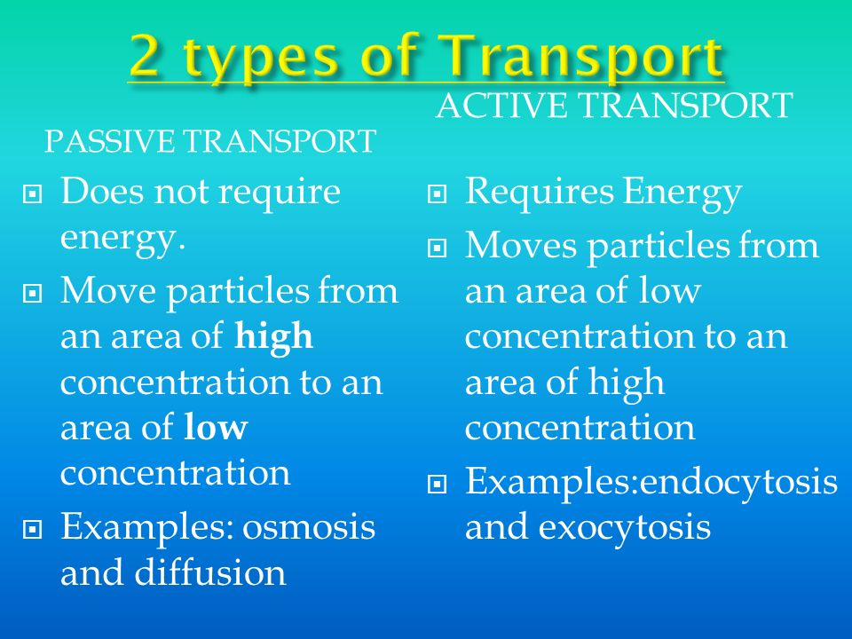 2 types of Transport Does not require energy.