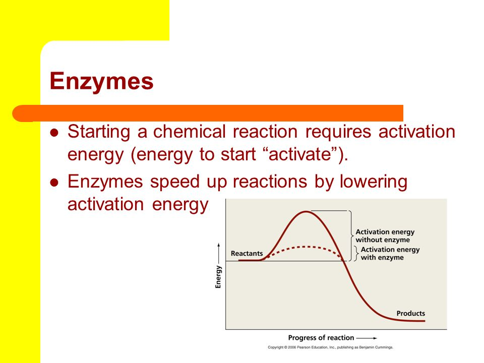Enzymes Starting a chemical reaction requires activation energy (energy to start activate ).