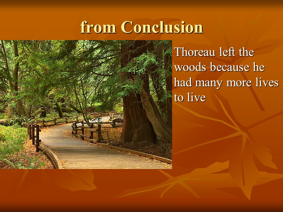 from Conclusion Thoreau left the woods because he had many more lives to live