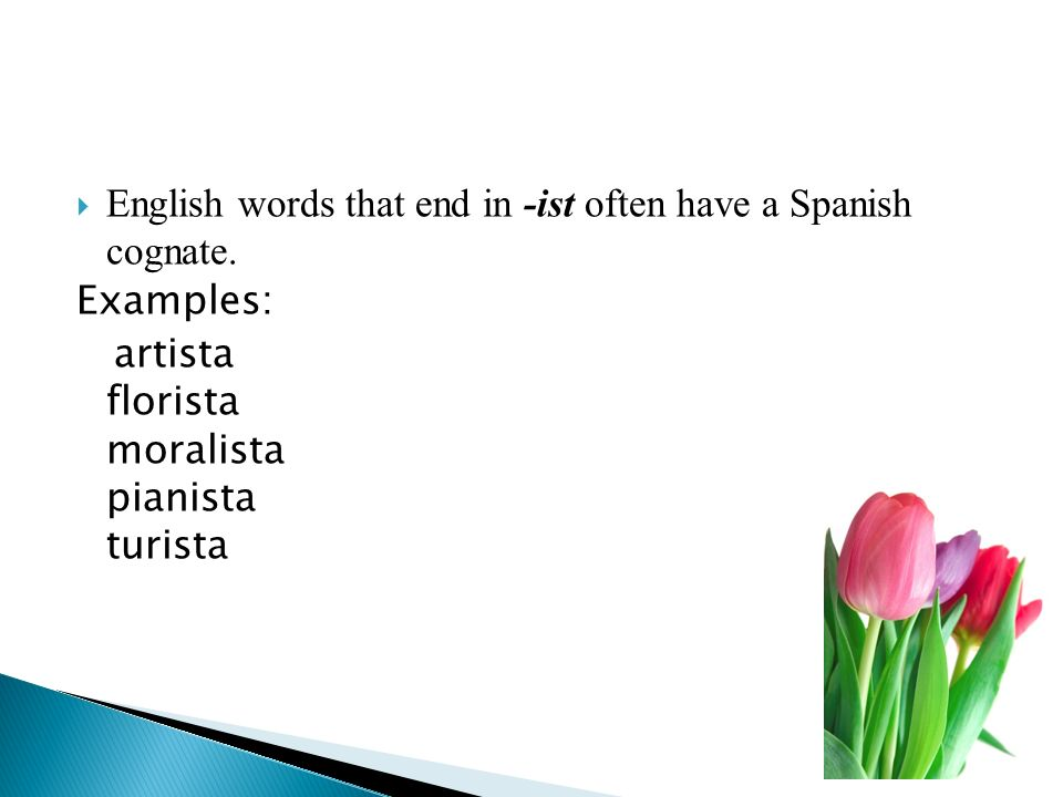 English words that end in -ist often have a Spanish cognate.
