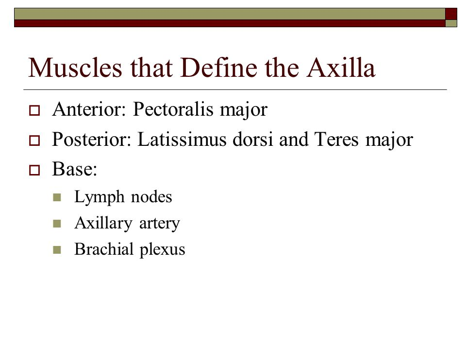 Muscles that Define the Axilla