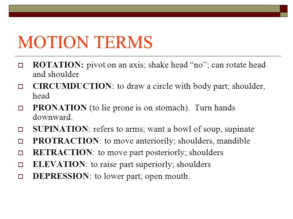 MOTION TERMS ROTATION: pivot on an axis; shake head no ; can rotate head and shoulder.