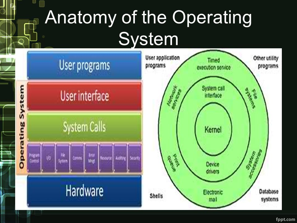 Anatomy of the Operating System