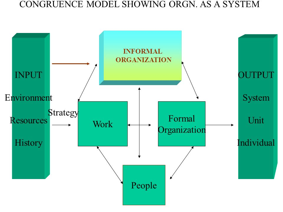 CONGRUENCE MODEL SHOWING ORGN. AS A SYSTEM