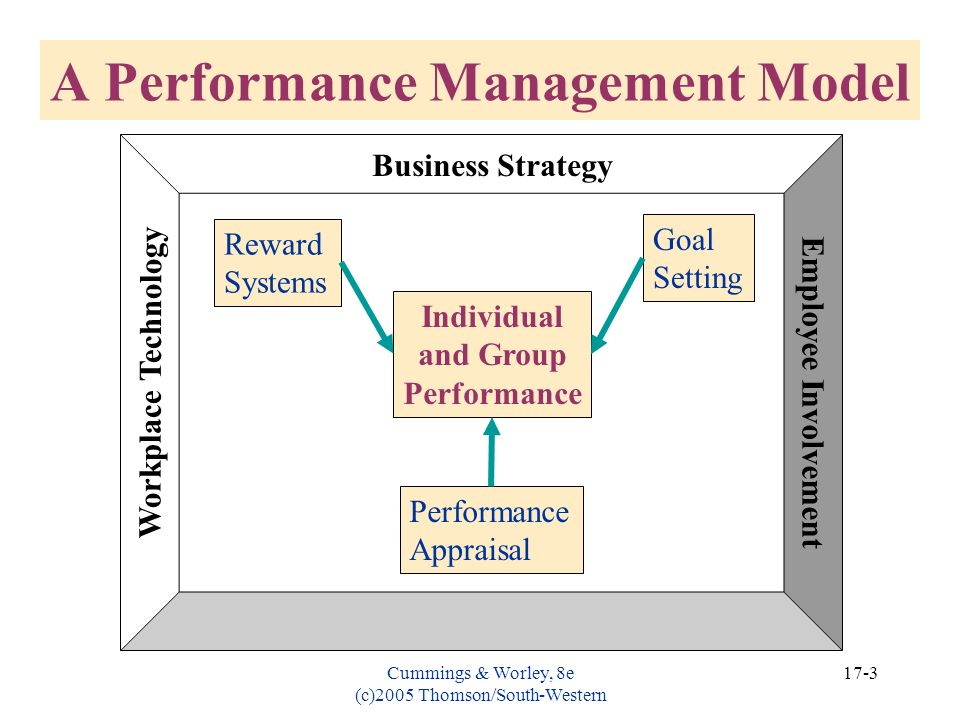 A Performance Management Model