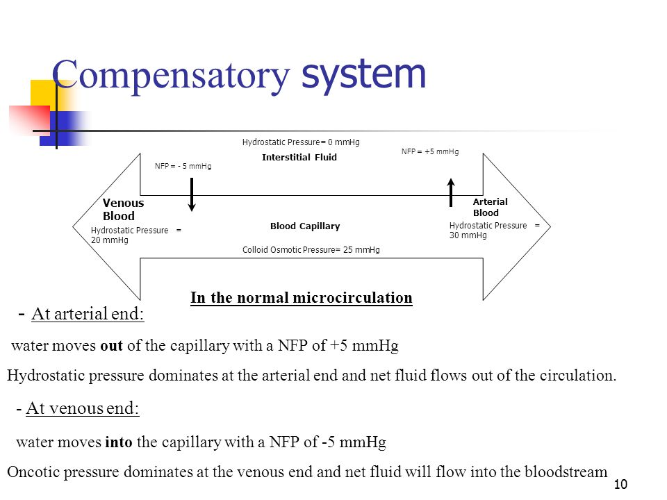Compensatory system - At arterial end: - At venous end: