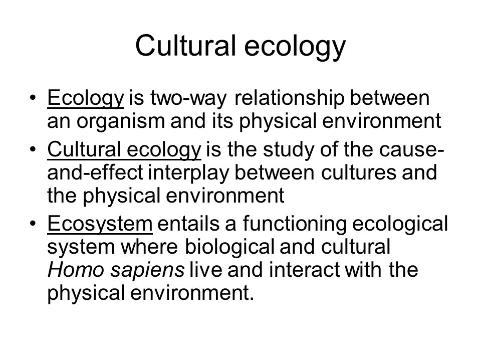 culture and ecology relationship
