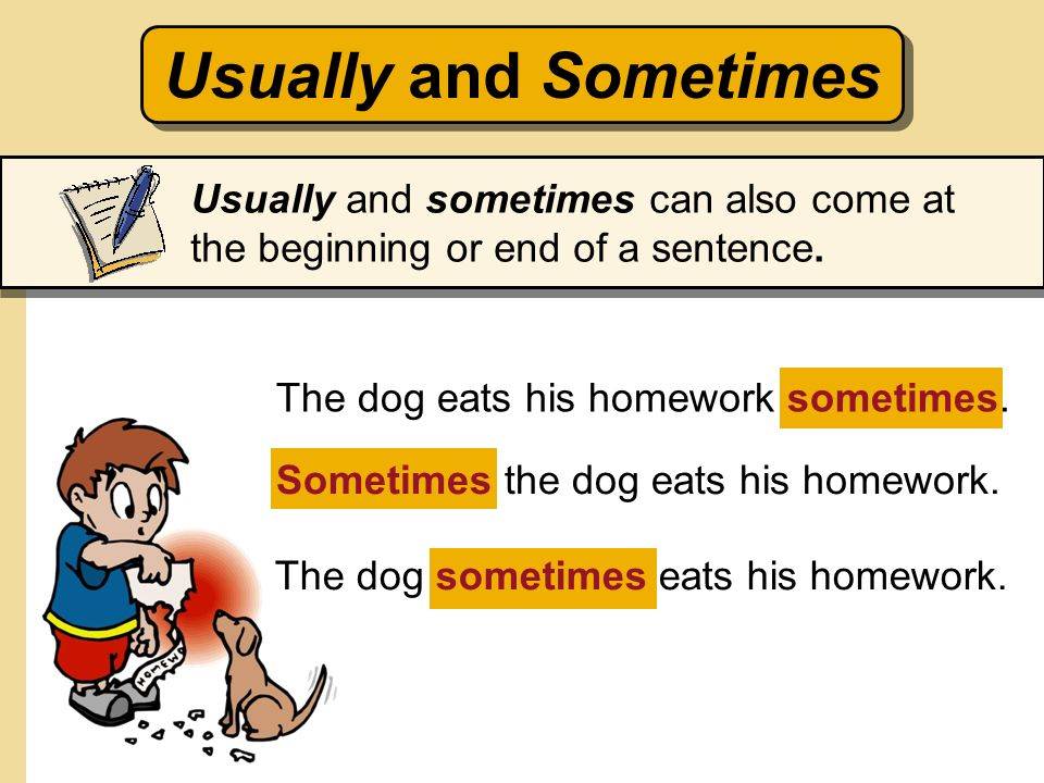 Usually and Sometimes Usually and sometimes can also come at the beginning or end of a sentence. The dog eats his homework sometimes.