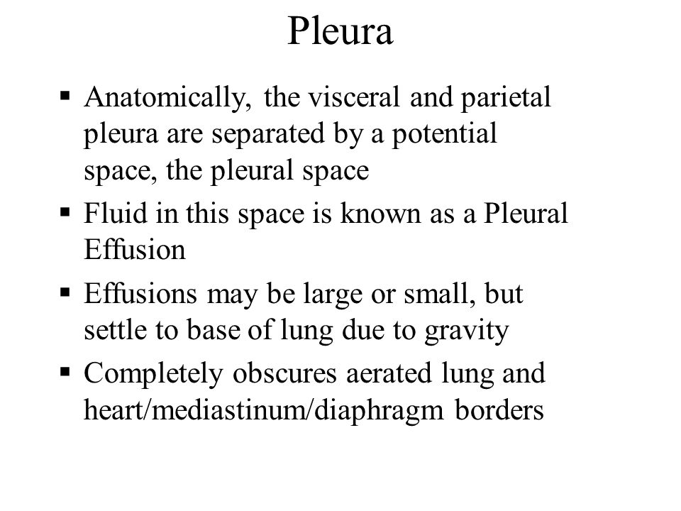Pleura Anatomically, the visceral and parietal pleura are separated by a potential space, the pleural space.