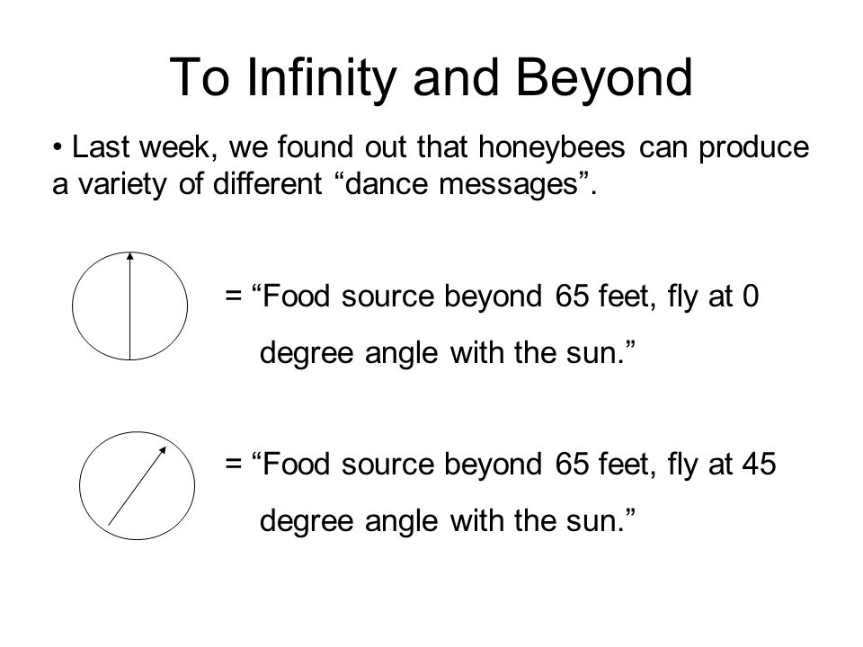 To Infinity and Beyond Last week, we found out that honeybees can produce a variety of different dance messages .