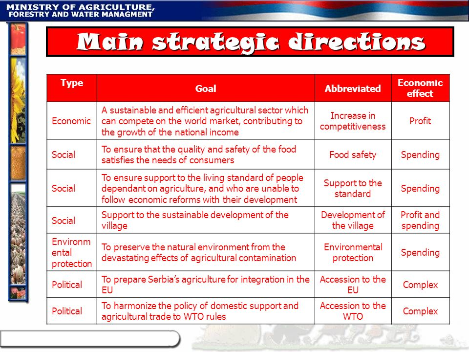 Main strategic directions