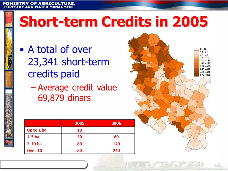 Short-term Credits in 2005 A total of over 23,341 short-term credits paid. Average credit value 69,879 dinars.