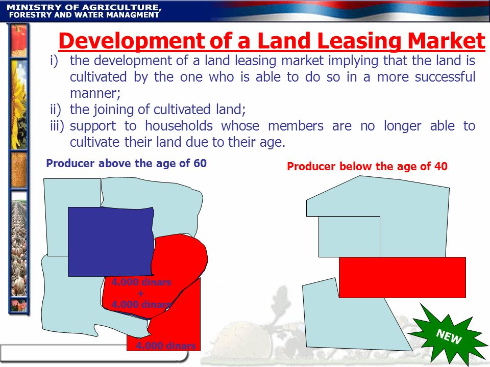 Development of a Land Leasing Market
