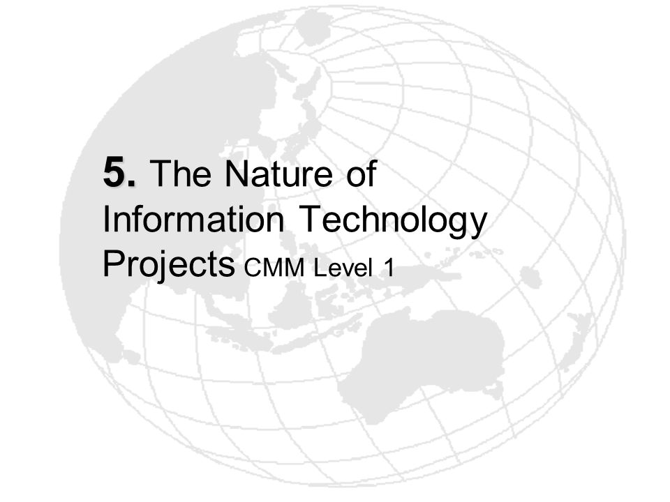 5. The Nature of Information Technology Projects CMM Level 1