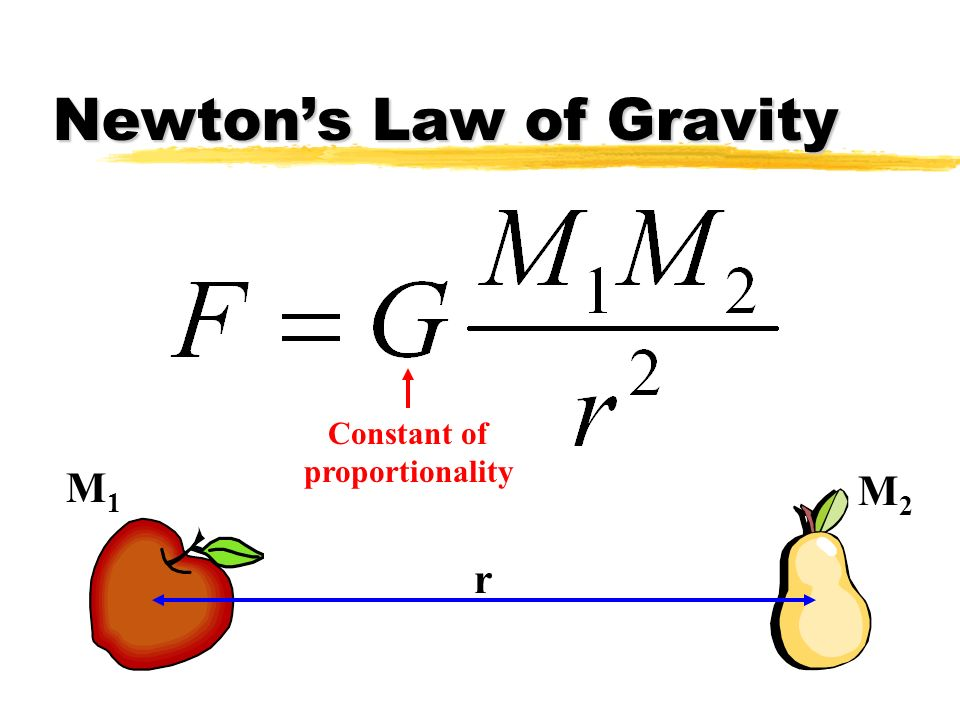 Newton's Law of Gravity