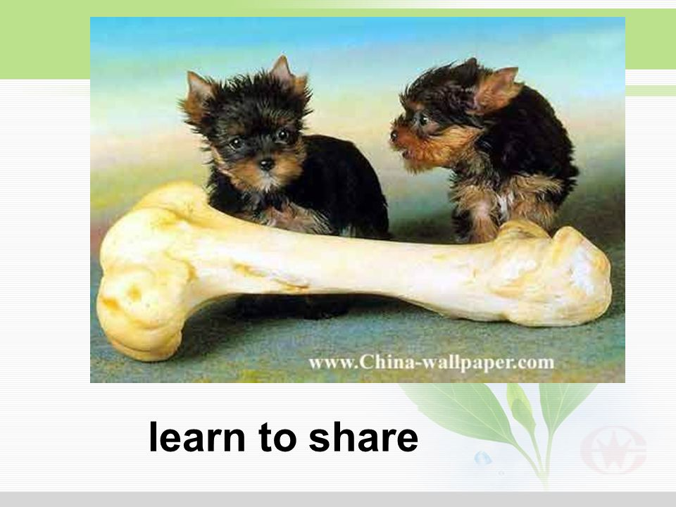 learn to share