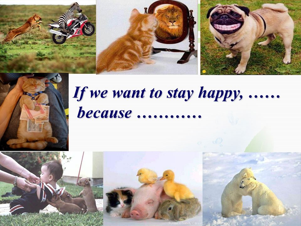 If we want to stay happy, ……