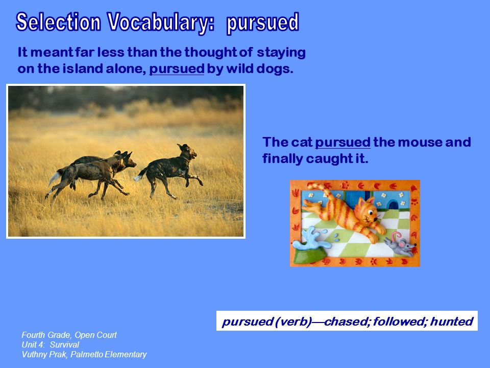 Selection Vocabulary: pursued