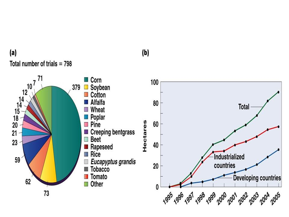 Figure 24-4 (a) A recent analysis of nearly 800 transgenic crop trials worldwide shows that GM varieties of corn, soybean, cotton, alfalfa, and wheat are among the most commonly manipulated crops ( Nature Biotechnology, 23(3), p.