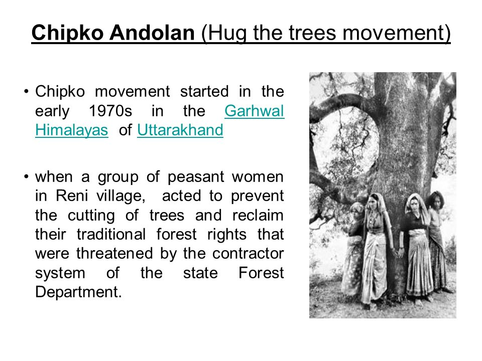 Chipko Andolan (Hug the trees movement)