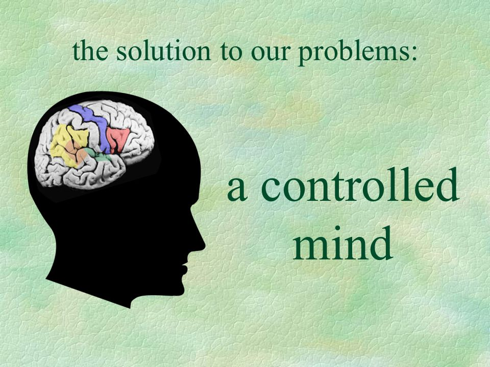 the solution to our problems: